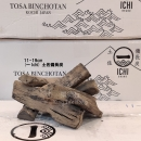 (日本製) 一ICHI土佐備長炭 11~19cm (3公斤) (非原箱)